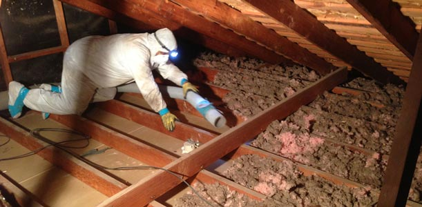 attic insulation removal Saskatoon